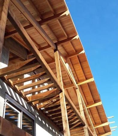 extension maison bois Mornant et Rive-de-Gier